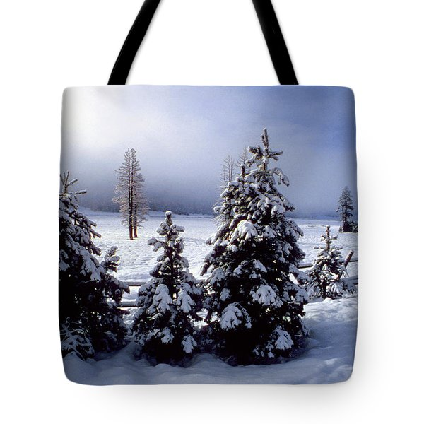 Winter Takes All Tote Bag