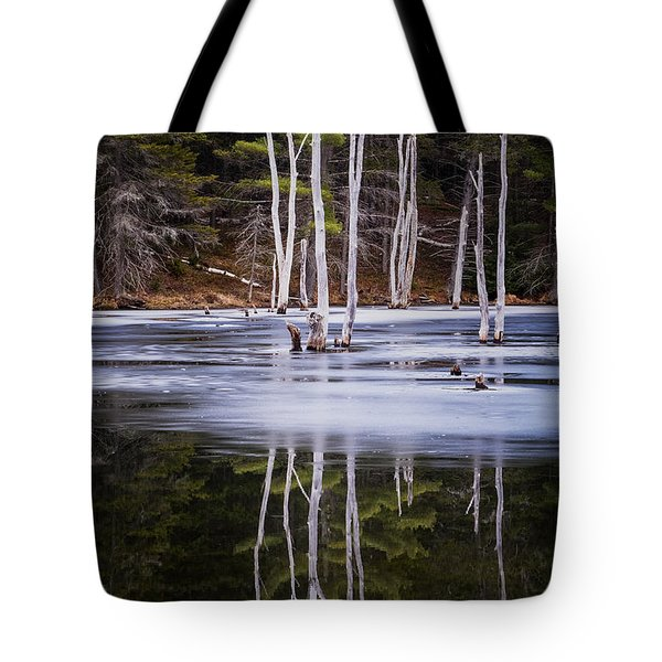 Winter Thaw Relections Tote Bag