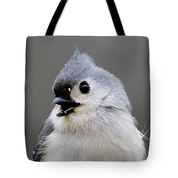 Winter Titmouse Tote Bag