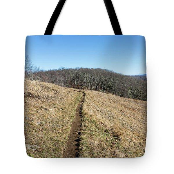 Winter Trail - December 7, 2016 Tote Bag