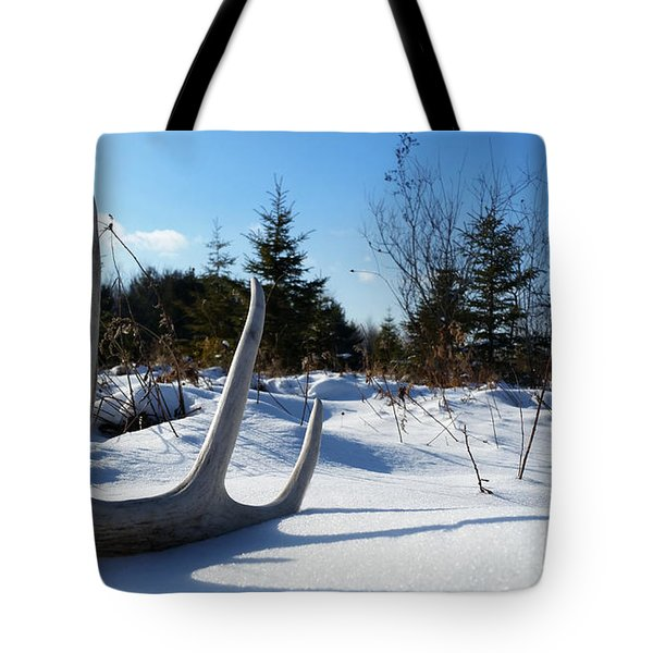 Winter Treasure Tote Bag