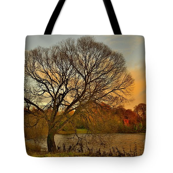 Winter Tree On The River Tweed Tote Bag