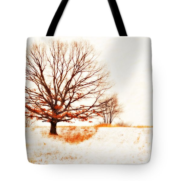 Winter Tree Tote Bag by Randy Steele