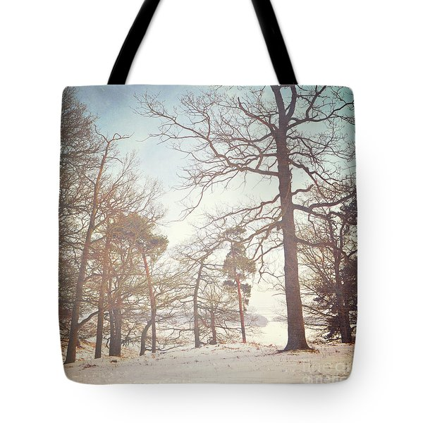 Tote Bag featuring the photograph Winter Trees by Lyn Randle