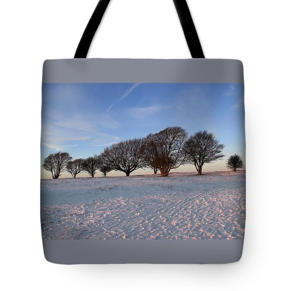 Winter Trees On The Ring Tote Bag by Hazy Apple