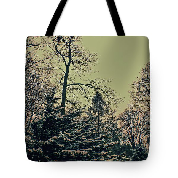Winter Trees Tote Bag by Sandy Moulder