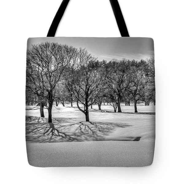 Tote Bag featuring the photograph Winter Trees by Wayne Marshall Chase
