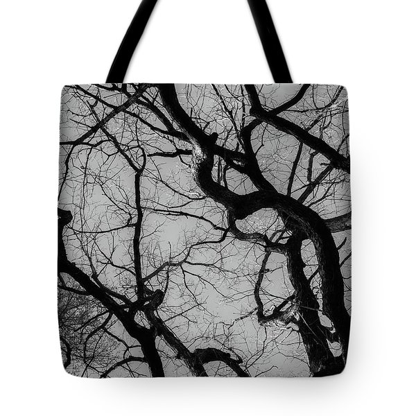 Tote Bag featuring the photograph Winter Veins by Keith Smith