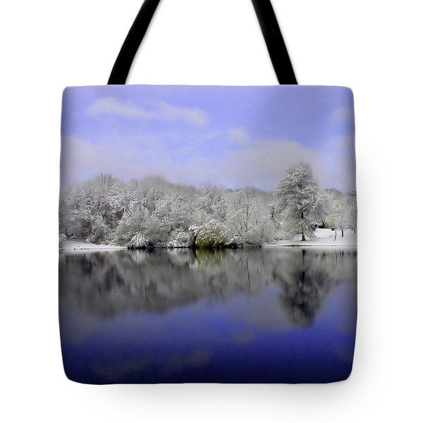 Winter View Tote Bag by Karol Livote