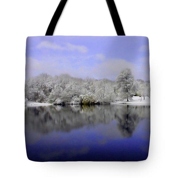 Winter View Tote Bag by Karol Livote