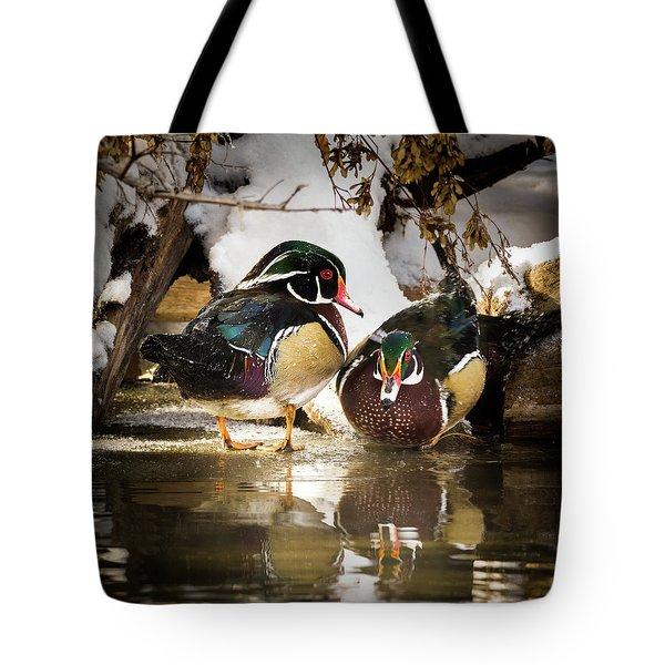 Winter Visitors - Wood Ducks Tote Bag