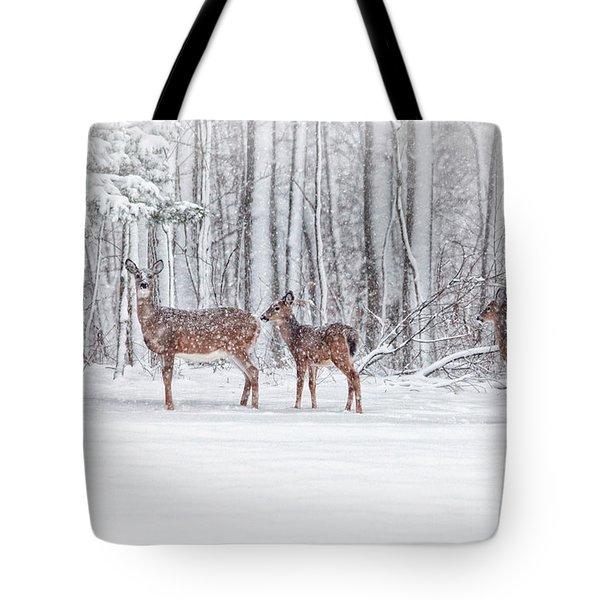 Winter Visits Tote Bag by Karol Livote