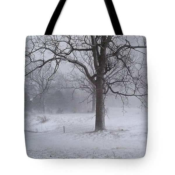 Winter Walnut Tote Bag by Denise Romano