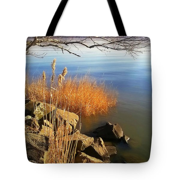 Winter Water Tote Bag