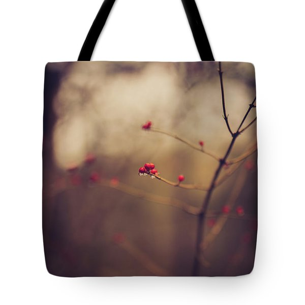 Tote Bag featuring the photograph Winter Whispers by Shane Holsclaw