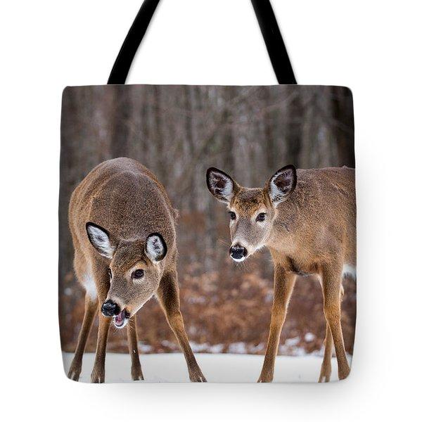 Winter White Tail Deer Tote Bag