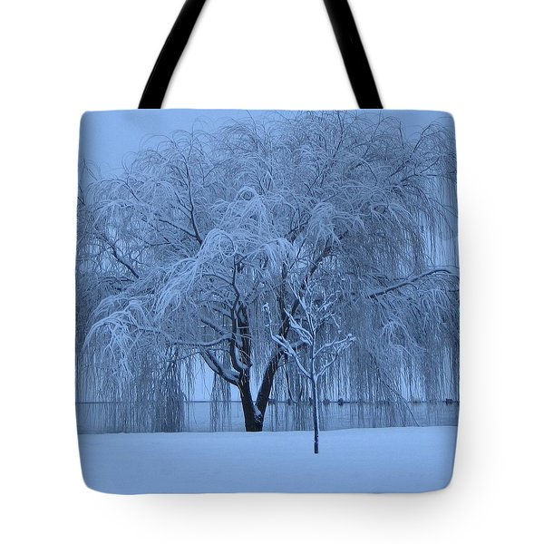 Tote Bag featuring the photograph Winter Willow Tree Before Dawn_fort Worth_tx by Barbara Yearty
