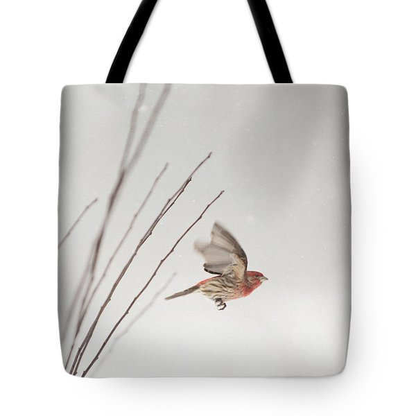 Winter Wind Surfing 1 Tote Bag