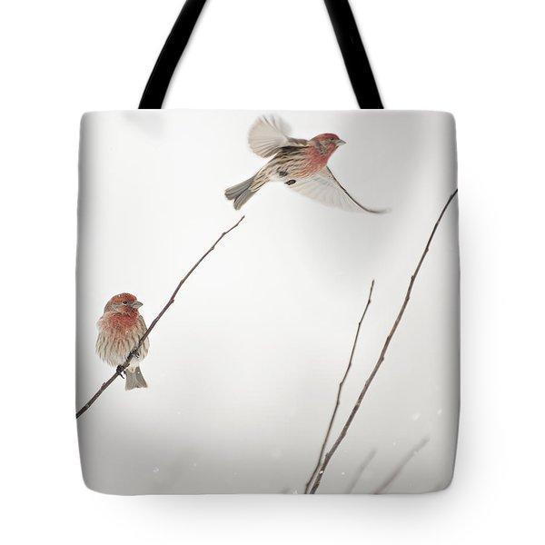 Winter Wind Surfing 2 Tote Bag