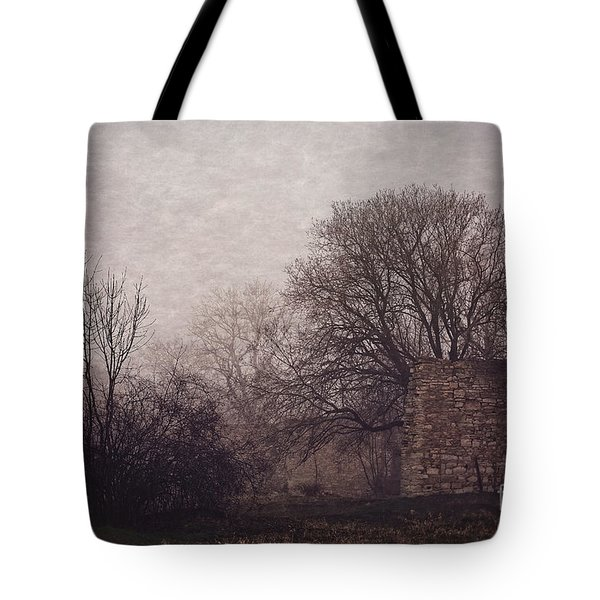 Winter Without Snow Tote Bag