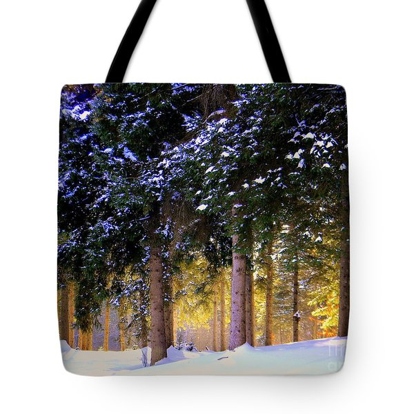 Winter Wonder Tote Bag