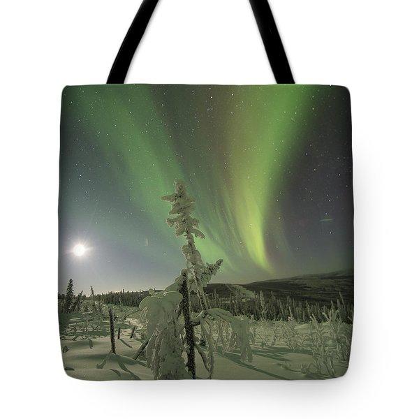 Winter Wonderland Aurora Tote Bag