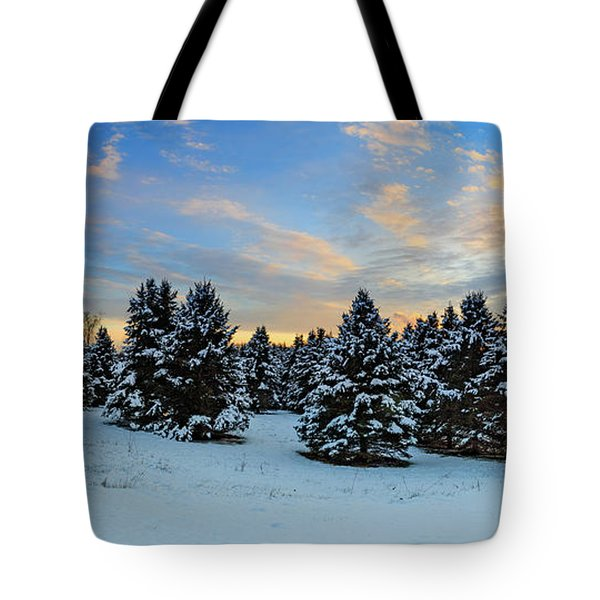 Tote Bag featuring the photograph Winter Wonderland  by Emmanuel Panagiotakis