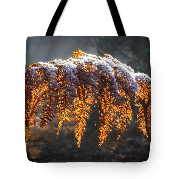 Winter Woods Tote Bag by Shirley Mitchell