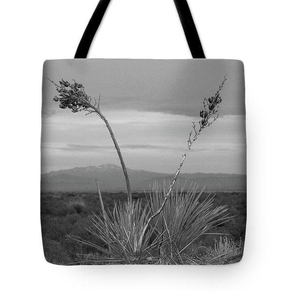 Winter Yucca Tote Bag