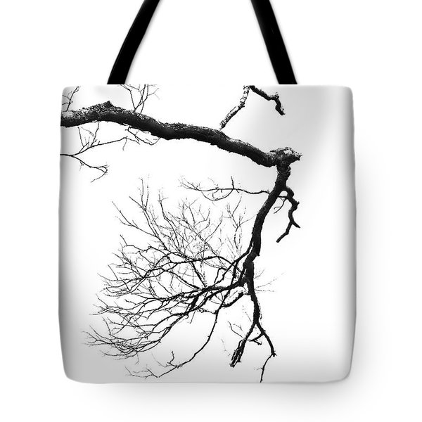 Tote Bag featuring the photograph Wintered Over by Skip Willits