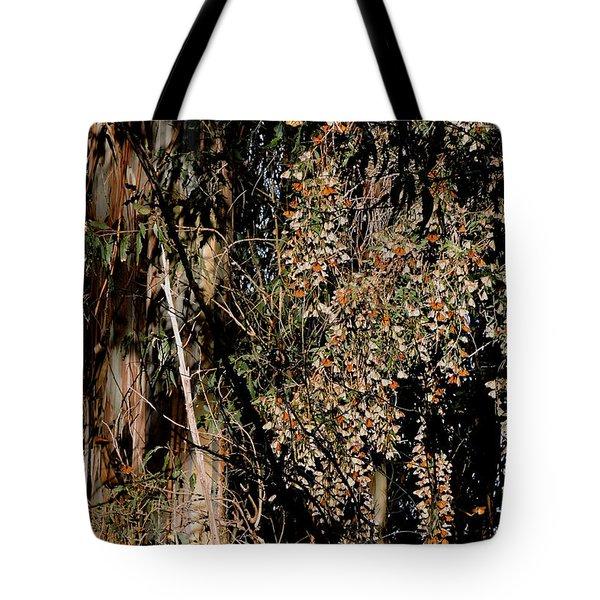 Wintering Monarchs Tote Bag