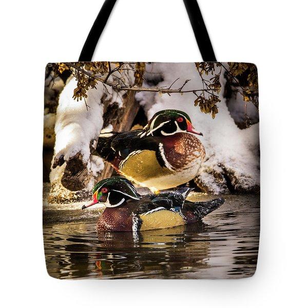 Wintering Wood Ducks Tote Bag