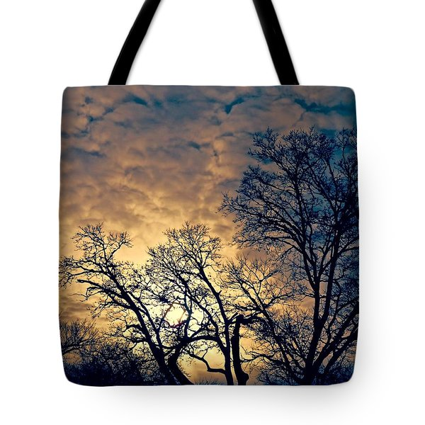 Winter's Afternoon Tote Bag