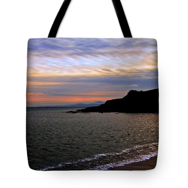 Winter's Beachcombing Tote Bag