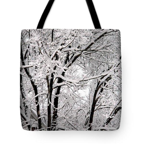 Winters Chill Tote Bag