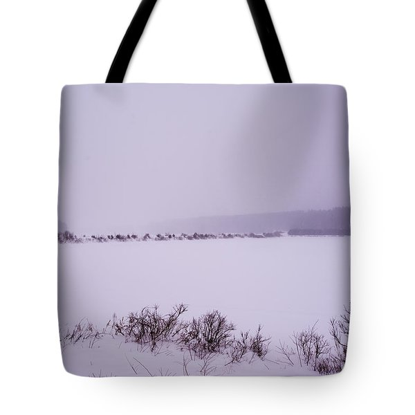 Winter's Desolation Tote Bag