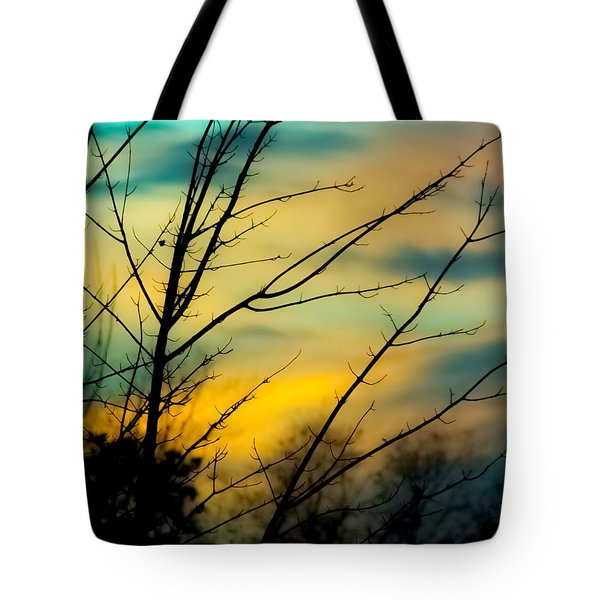 Winters Dusk Tote Bag