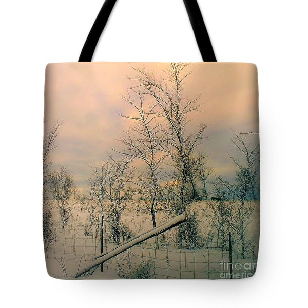 Winter's Face Tote Bag by Elfriede Fulda