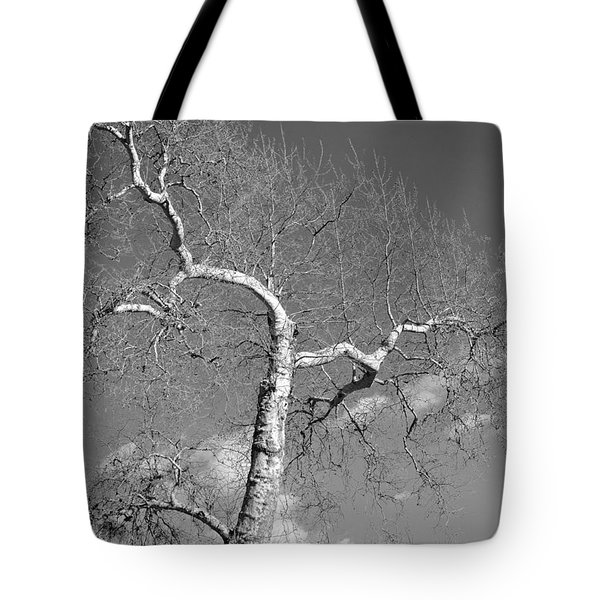 Winter's Ghost Tote Bag