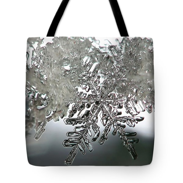 Winter's Glory Tote Bag by Lauren Radke
