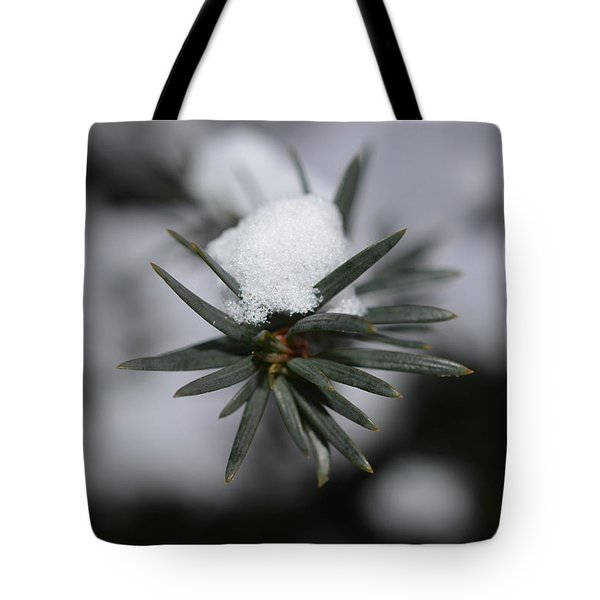 Winter's Grip Tote Bag