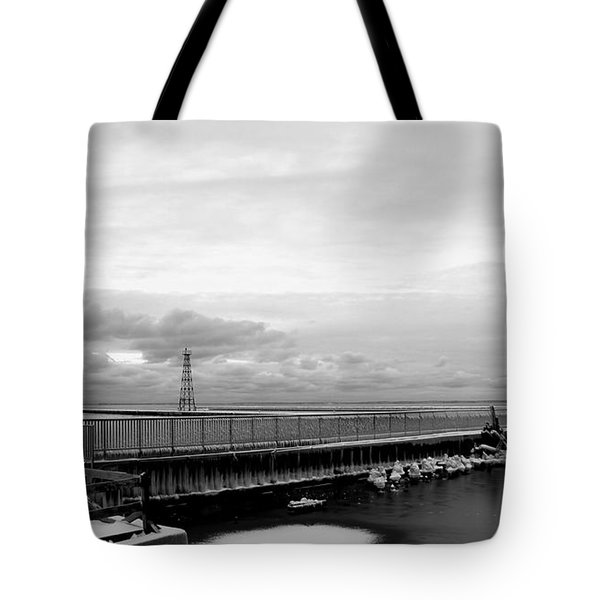 Tote Bag featuring the photograph Winter's Icy Grip On Lighthouse Ann Arbor Park by Mark J Seefeldt