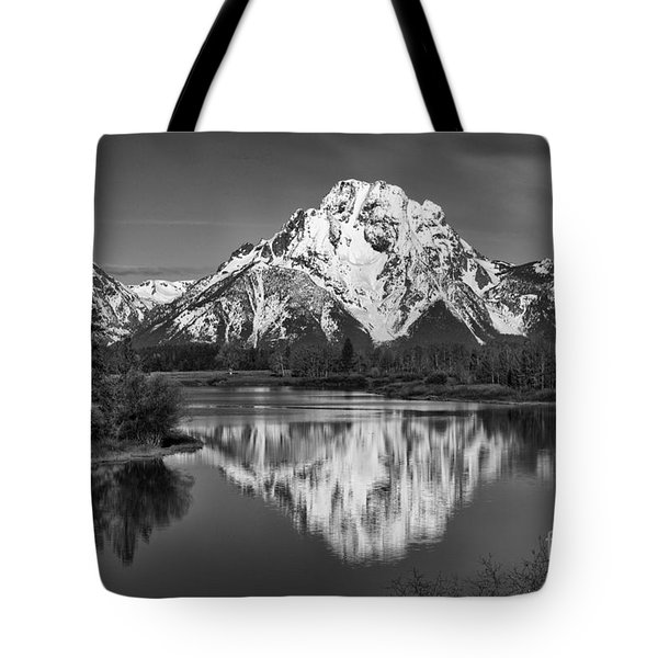 Winter's Last Hold Tote Bag by Sandra Bronstein