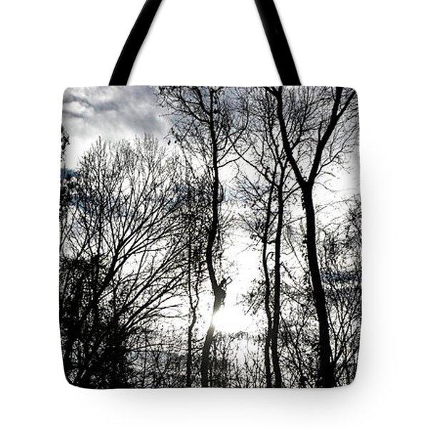 Winter's Mystic Horizon Tote Bag