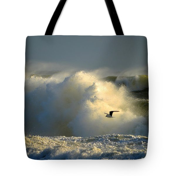 Winter's Passing Tote Bag
