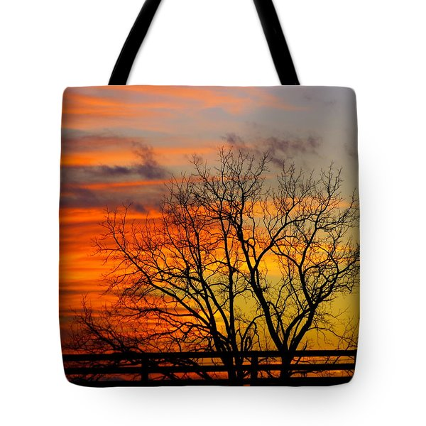 Tote Bag featuring the photograph Winter's Scene by Donald C Morgan