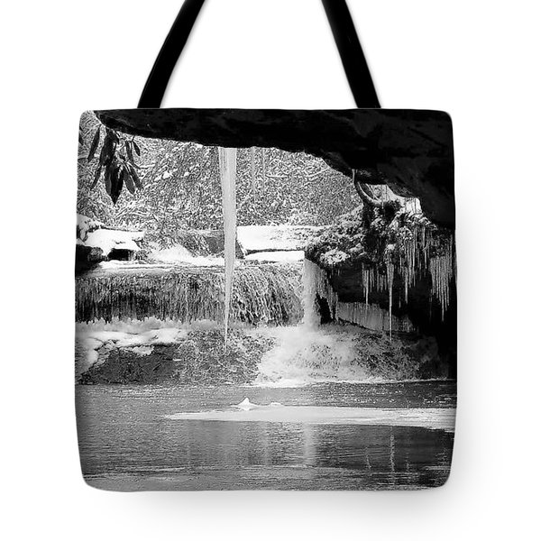 Winters Secrets Tote Bag