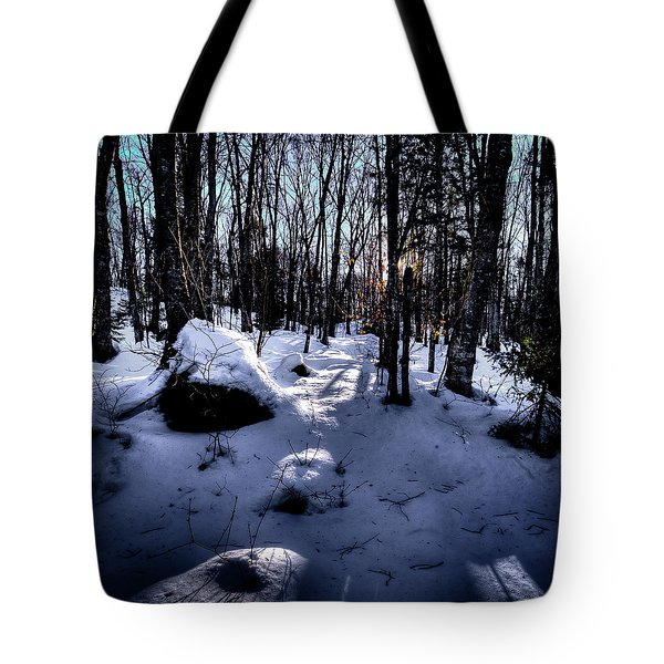 Tote Bag featuring the photograph Winters Shadows by David Patterson