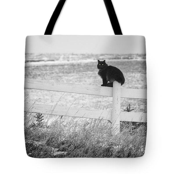 Tote Bag featuring the photograph Winter's Stalker by Rikk Flohr