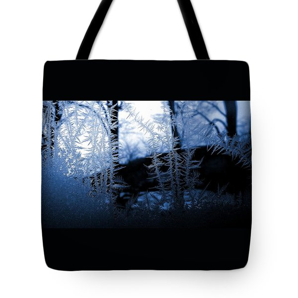 Wintertide Tote Bag by Danielle R T Haney